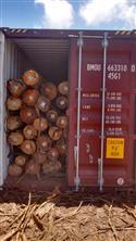 2017年底最后一批巴西桉木装柜出货,带出货码单