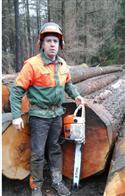 2017年3月供应欧洲的大径A级花旗松,木材质量高贵